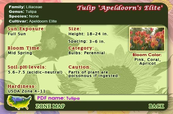 Flower reference menu