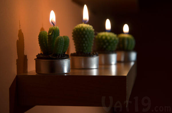 Cactus Tea Light Candles on a shelf add wonderful garden ambience to any room.