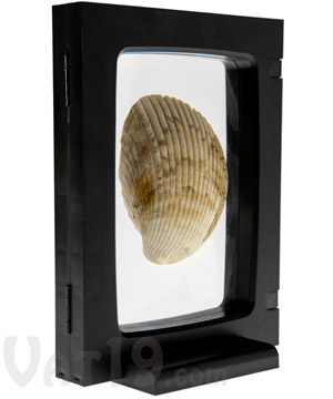 3D Display Frame