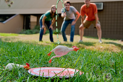 The object of the Flickin' Chicken Game is to toss rubber chickens onto a small target disc.