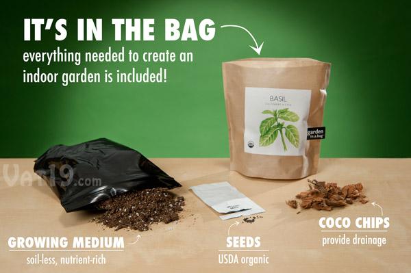 Contents of the DIY Garden in a Bag