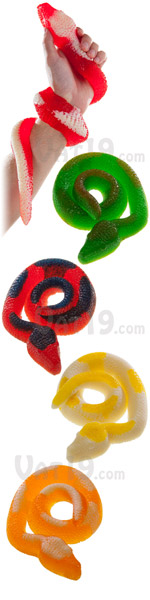 Giant Gummy Snakes in a variety of flavors.